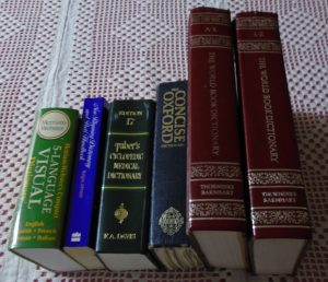 Read more about the article Reading with a dictionary